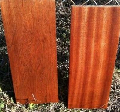 timber01
